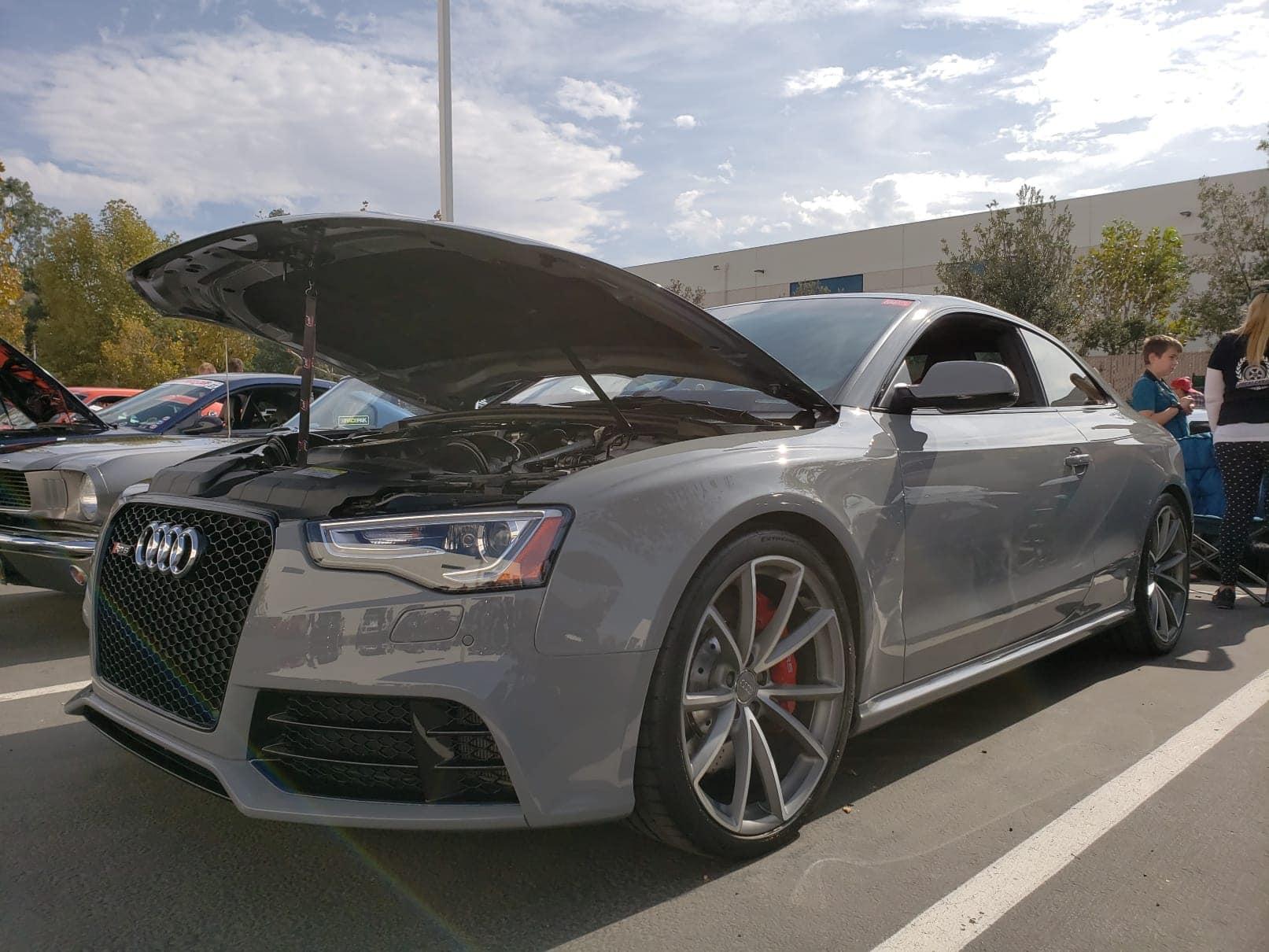 Local Car Fest Audi